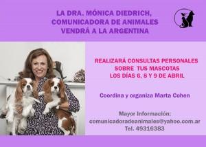 Consultas en Buenos Aires 2016