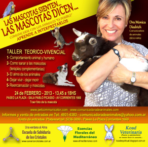 eventos de doctora monica